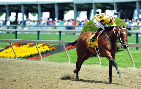 Terra Promessa, Jose Ortiz up, pulls away to win the Gr.3 Allaire DuPont Distaff at Pimlico