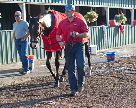 Norm Casse leads Classic Empire back to barn after bath, with Mark Casse on left. Preakness contenders at Pimlico.  May 17, 2017