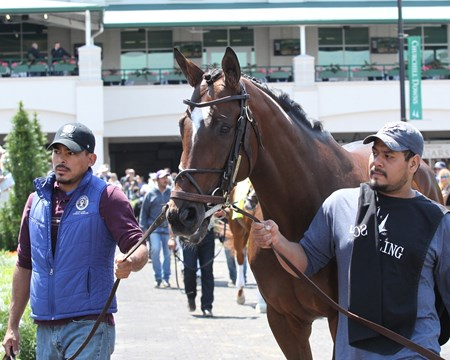 Lookin At Lee - Schooling - Churchill Downs - 05-03-17
