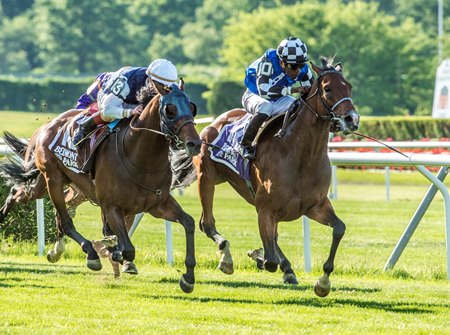 Red Cardinal (inside) holds off St Michel to win his North American debut