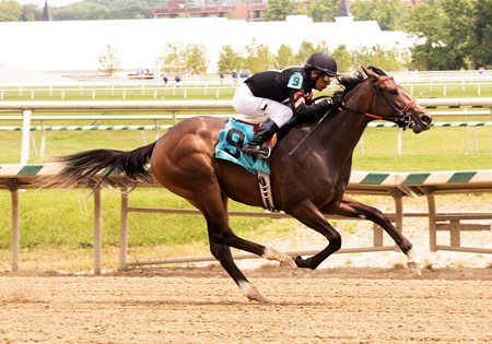 Limited View - Maiden Win, Laurel, June 17, 2017 First winner for Freedom Child