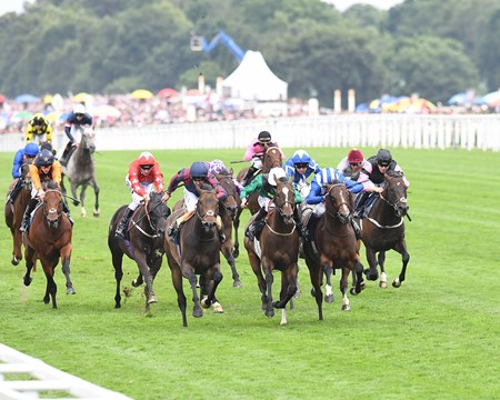The Tin Man wins the 2017 Diamond Jubilee Stakes