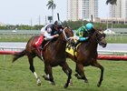 Earth (outside) showed quick turn of foot to catch the filly Pocket Book in Gulfstream Park maiden race.