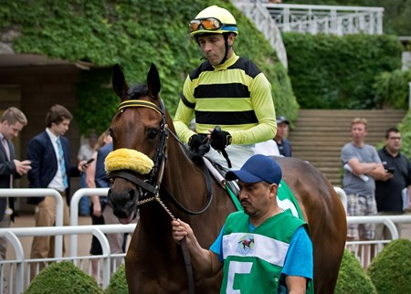 Lovely Loyree winning the Mike Spellman Memorial Handicap at Arlington International 6/17/17, jockey Jose Valdivia Jr up