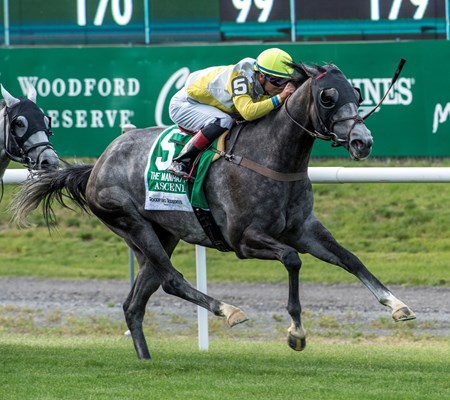 Ascend with jockey Jose Ortiz aboard wins the 116th running of The Woodford Reserve Manhattan G1 at Belmont Park June 10, 2017 in Elmont, N.Y.