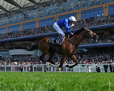 Barney Roy wins the 2017 St. James's Palace Stakes at Royal Ascot