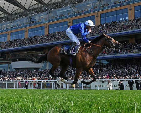 Barney Roy; James Doyle; win the St. James's Palace Stakes Royal Ascot; Ascot; UK 6/20/17