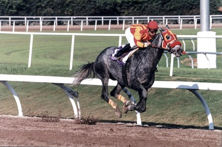 Skip Away dominated the 1997 Breeders Cup Classic, winning by 6 lengths in 1:59.16, setting a new stakes record.