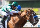 Stellar Wind (outside) outfights Vale Dori for the victory in the Beholder Mile