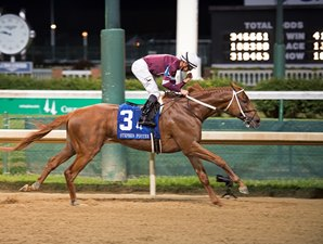 Gun Runner Powers to Easy Stephen Foster Win
