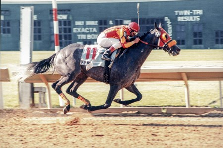 Skip Away wins the 1996 Ohio Derby by 3 1/2 lengths