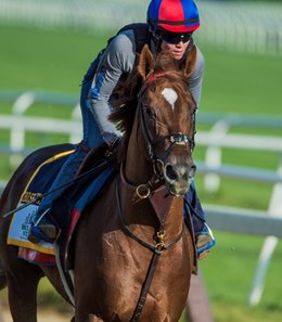 Irish War Cry had a a 1 1/2-mile gallop on June 8