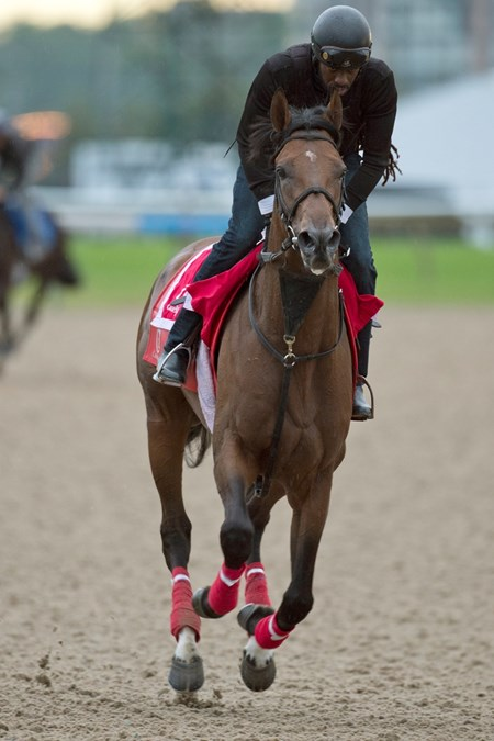 State of Honor - Woodbine - June 27, 2017