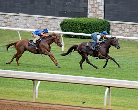 Con Te Partiro (front) and Undrafted work in 1:00.40 and 1:00.60 respectively.