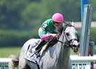 Disco Partner flies home to take the Jaipur