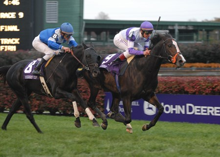 Red Rocks wins the 2006 Breeders' Cup Turf (G1T).