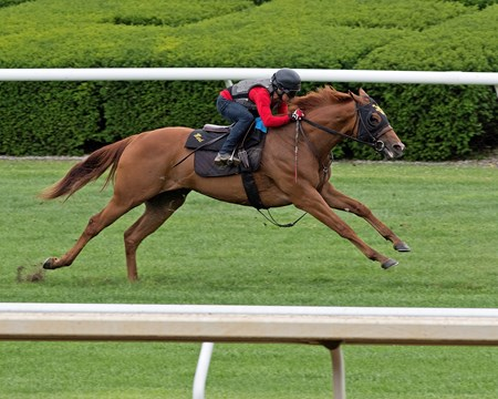 Fairyland