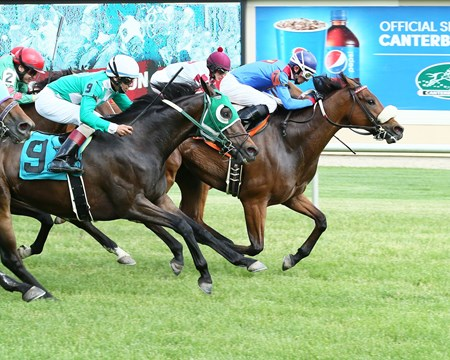 A P Is Loose wins the 2017 Minnesota Turf Stakes