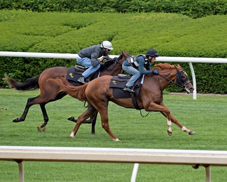 Happy Like a Fool (outside) works in company in June at Keeneland