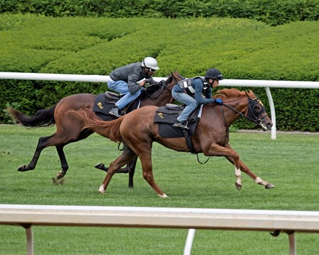 Happy Like A Fool (front outside) works with Arawak