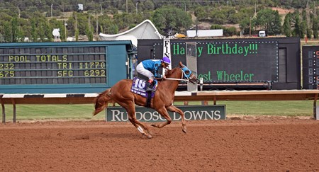 On the Low Down winning the 2017 Mountain Top Futurity
