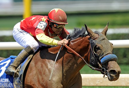 Abel Tasman, Mike Smith up, on her way to winning the G1 Acorn