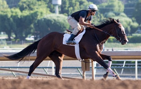 Paradise Woods works at Santa Anita June 18