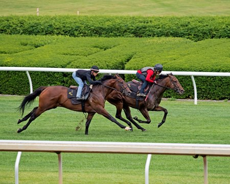 Lady Aurelia pulls ahead of Bound for Nowhere at Keeneland