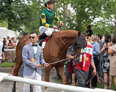 Twisted Tom, 2017 Belmont Stakes