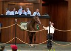 Hip 199 sold for a final bid of $400,000