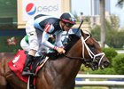 Earth breaks his maiden in his debut June 11 at Gulfstream Park