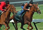 Faversham (inside) works at Los Alamitos Race Course June 3
