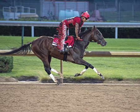 Churchill Works at Churchill including Classic Empire's final work before the Belmont Stakes. June 2, 2017 Churchill in Louisville, Kentucky.