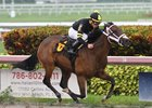 Happy River wins first time out at Gulfstream Park June 9