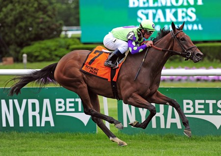 New Money Honey wins the 2017 Wonder Again Stakes (G3T)