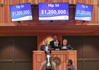Belmont Stakes winner Tapwrit sells as Hip 34 at the 2015 Fasig-Tipton Saratoga yearling sale
