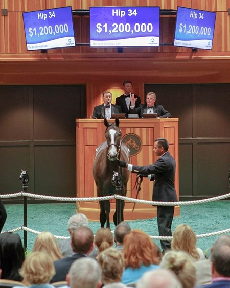 Hip 34; 2015 August Fasig-Tipton Saratoga Selected Yearling Sale; Tapwrit