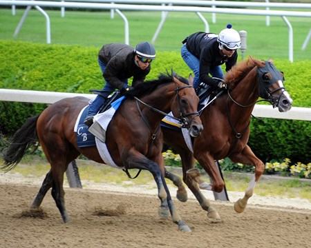 Twisted Tom (inside) and Economic Model - Belmont Park, June 3, 2017