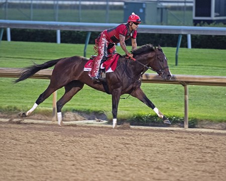 Churchill Works at Churchill including Classic Empire's final work before the Belmont Stakes. Martin Rivera up June 2, 2017 Churchill in Louisville, Kentucky.