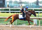 Gun Runner works under Andrew Garcia at Churchill Downs