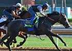 Arrogate works six furlongs at Santa Anita June 25