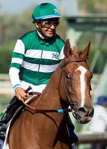 To date, Stellar Wind has a record of 10-2-1 from 15 starts and earned $2,233,200