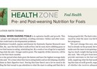 Health Zone: Pre- and Post-weaning Nutrition for Foals