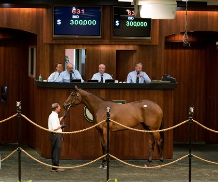 An Astrology filly sold for $300,000 to top the final session of the Ocala Breeders' Sales 2-year-olds and horses in training sale June 14