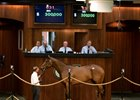 Astrology Filly Closes Out Strong OBS Sale