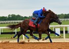 Irish War Cry (outside) works in company with Ascend June 3 at Fair Hill Training Center
