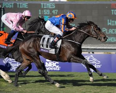 Magician Ire Horse Profile Bloodhorse