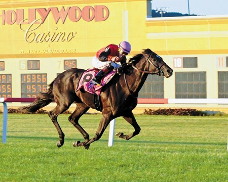 Frostmourne with Irad Ortiz Jr. wins the Penn Mile Stakes (G2T) at Hollywood Casino at Penn National Race Course on June 3 2017