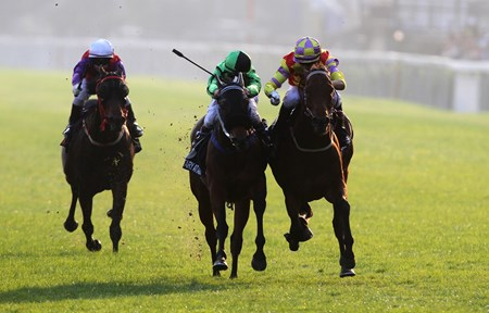 Designs On Rome (right) edges out Military Attack to score a narrow win in the 2014 LONGINES Hong Kong Cup.
