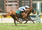 'Hermaphrodite' Reported Before Race at Santa Anita